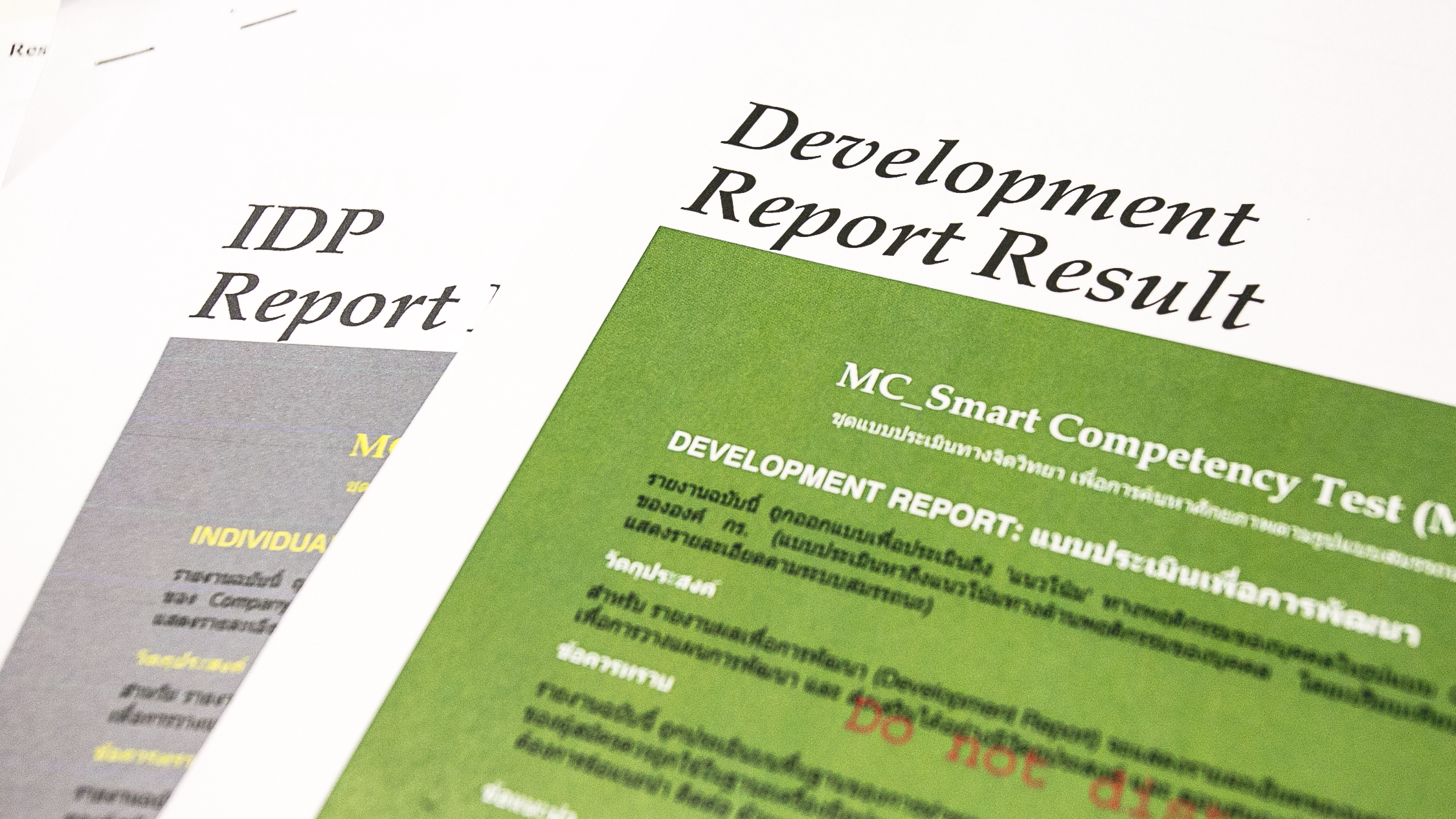 Development Report