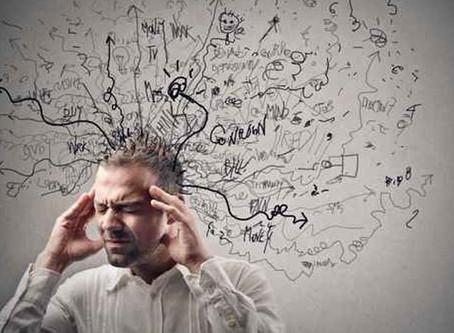 Neuroscience for Competency: บรรลุสมรรถนะผ่านหลักการทำงานของเส้นใยประสาท