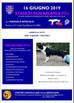 Stage di Dog Balance Fit a Nuvolera 16 Giugno 2019!