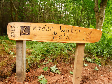 Leader Water Path Improvements