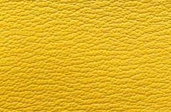 Chevre - Yellow