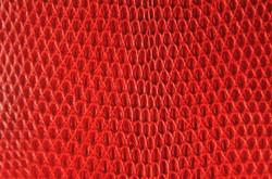 Lizard - Red