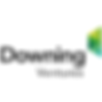 Downing Ventures logo.png