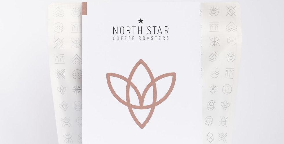 North Star Brazil 250g