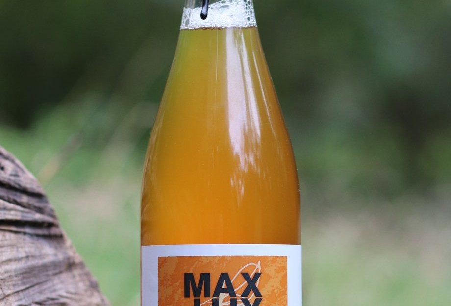 Pilton Max Lux
