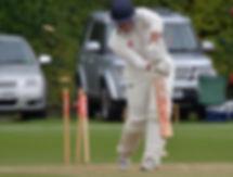 Cricket 6.jpeg