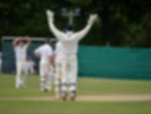 Cranleigh vs Tunbridge Cricket Match the