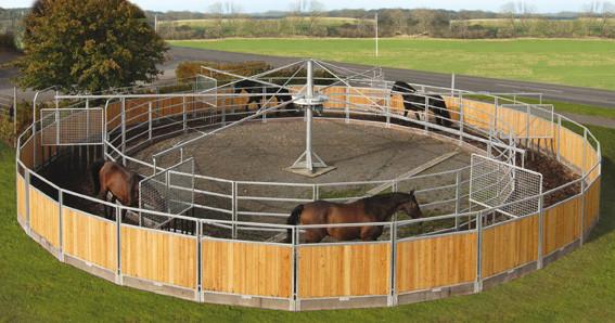 Horses circle Track