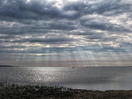 Весенний судак Калининградского залива!
