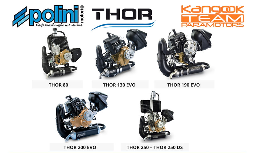 Polini motors.jpg