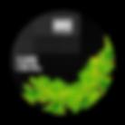 Album Art Green.png