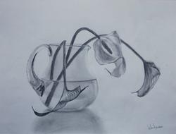Vase with callas