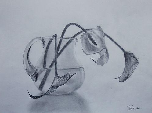 Glass pitcher with callas, original drawing