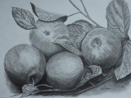 Big apples, original drawing