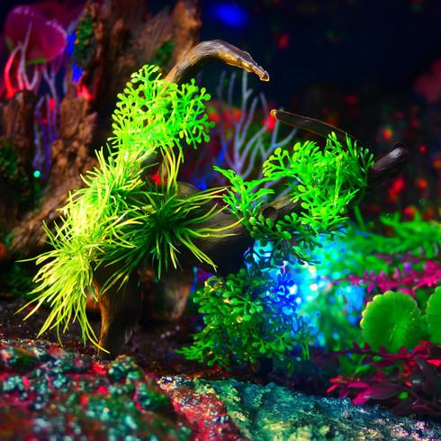 流木と水草 セット (グリーン) 〔小茂み(緑)x2 小茂み(紫)x1 大茂みx1 流木x1〕