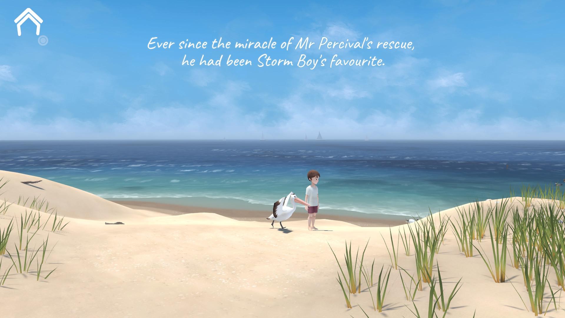 Storm Boy_20210116010100.jpg