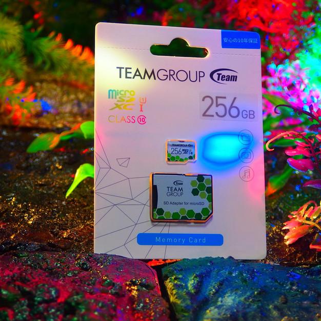 microSDXCカード 256GB 高速転送 UHS-1SD変換アダプター付属〔Team〕