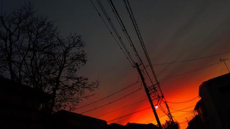 切り絵のような夕焼け