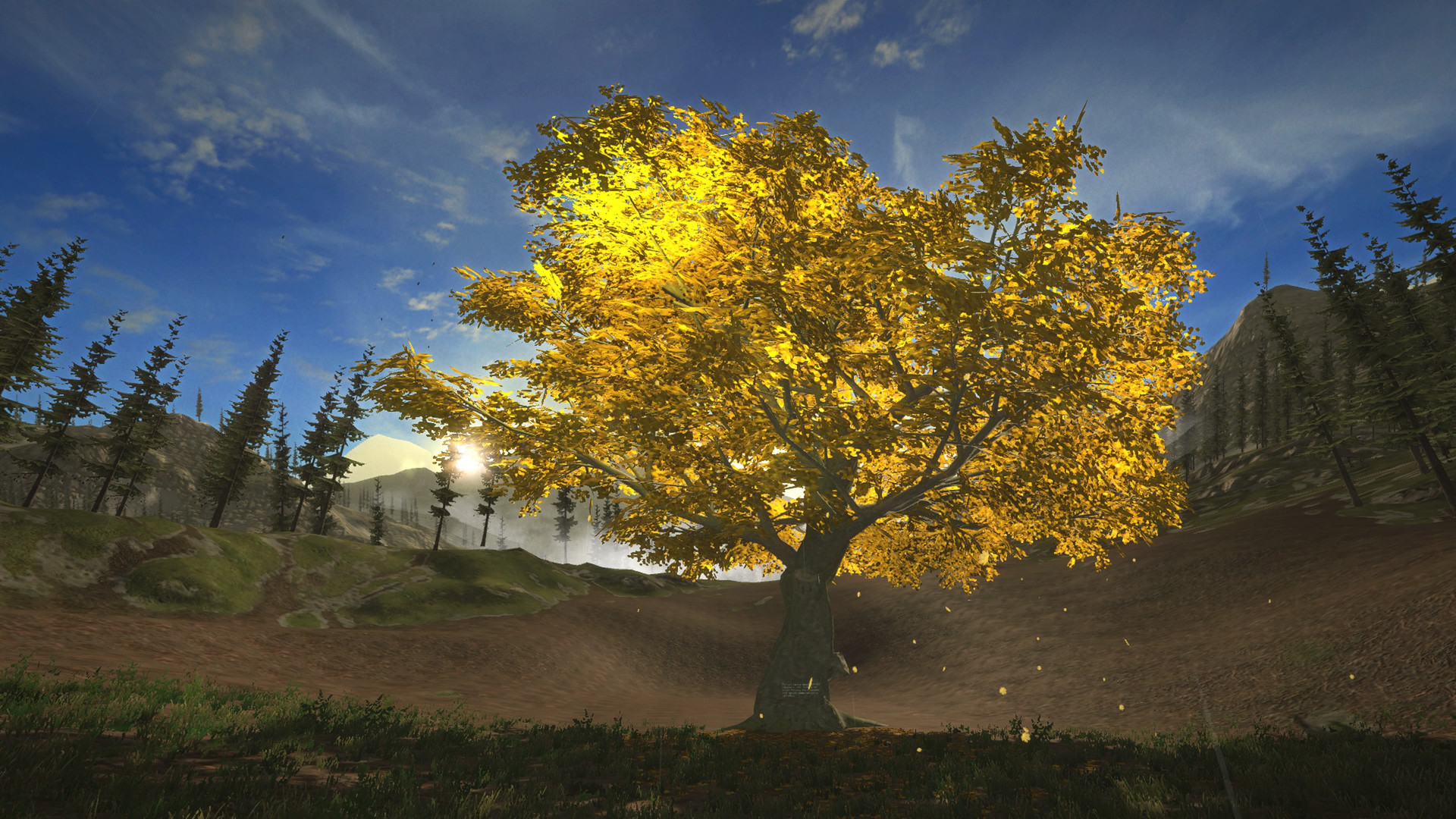 The First Tree_20200508044105.jpg