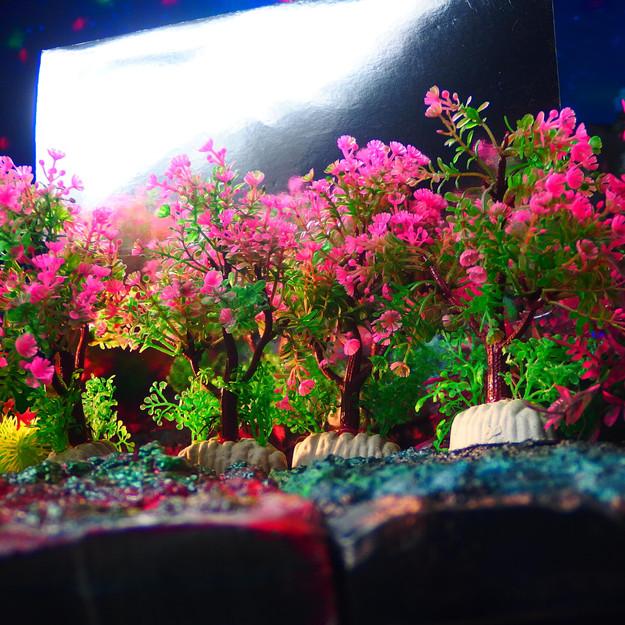 小さい木 (ピンク-セット)15cm小型水草4枚
