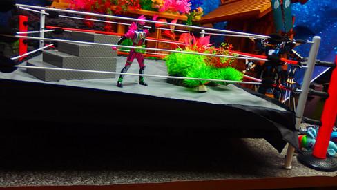 フィギュアトイカンパニーレスリングリングfor WWEアクションフィギュア Figures Toy Company Wrestling Ring for WWE Action Figures +階段全塗装カスタム