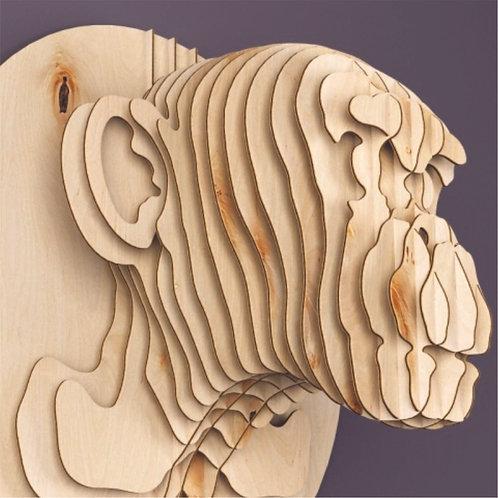 Cabeza Mono