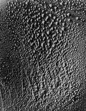 「水のフォトグラム」