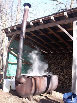 Male syrup evaporator