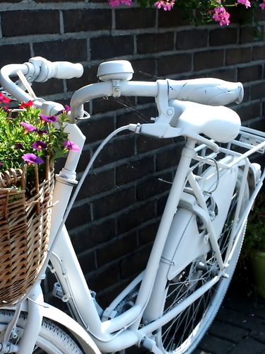 witte fiets.png