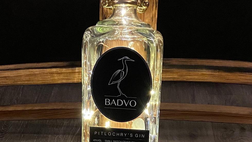Badvo gin wall hanging bottle light