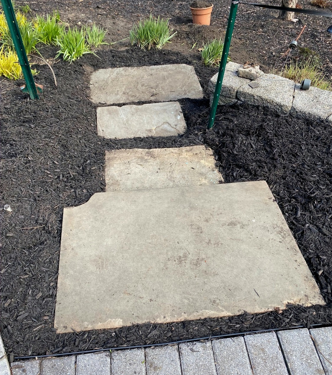 The view down into garden bed