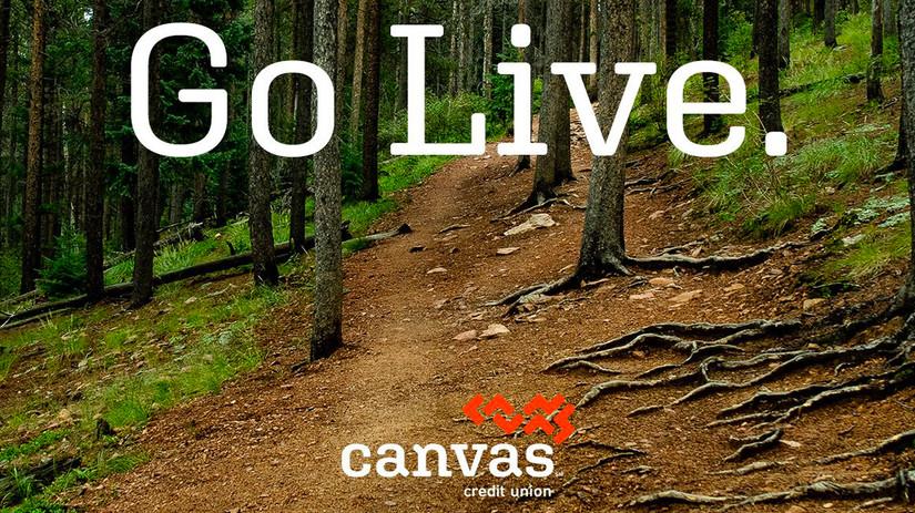 Go Live.jpg