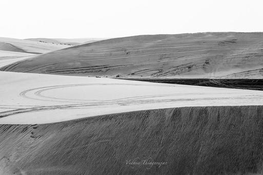 Desert BW 3.jpg