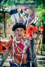 Hornbill Festival 2016 7.jpg
