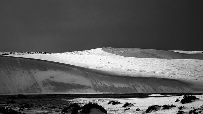 Desert BW 5.jpg