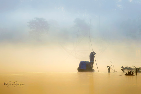 Majuli misty sunrise fisherman
