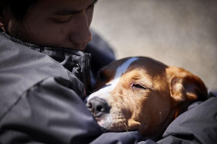 Homeless Veteran and Dog2.jpg
