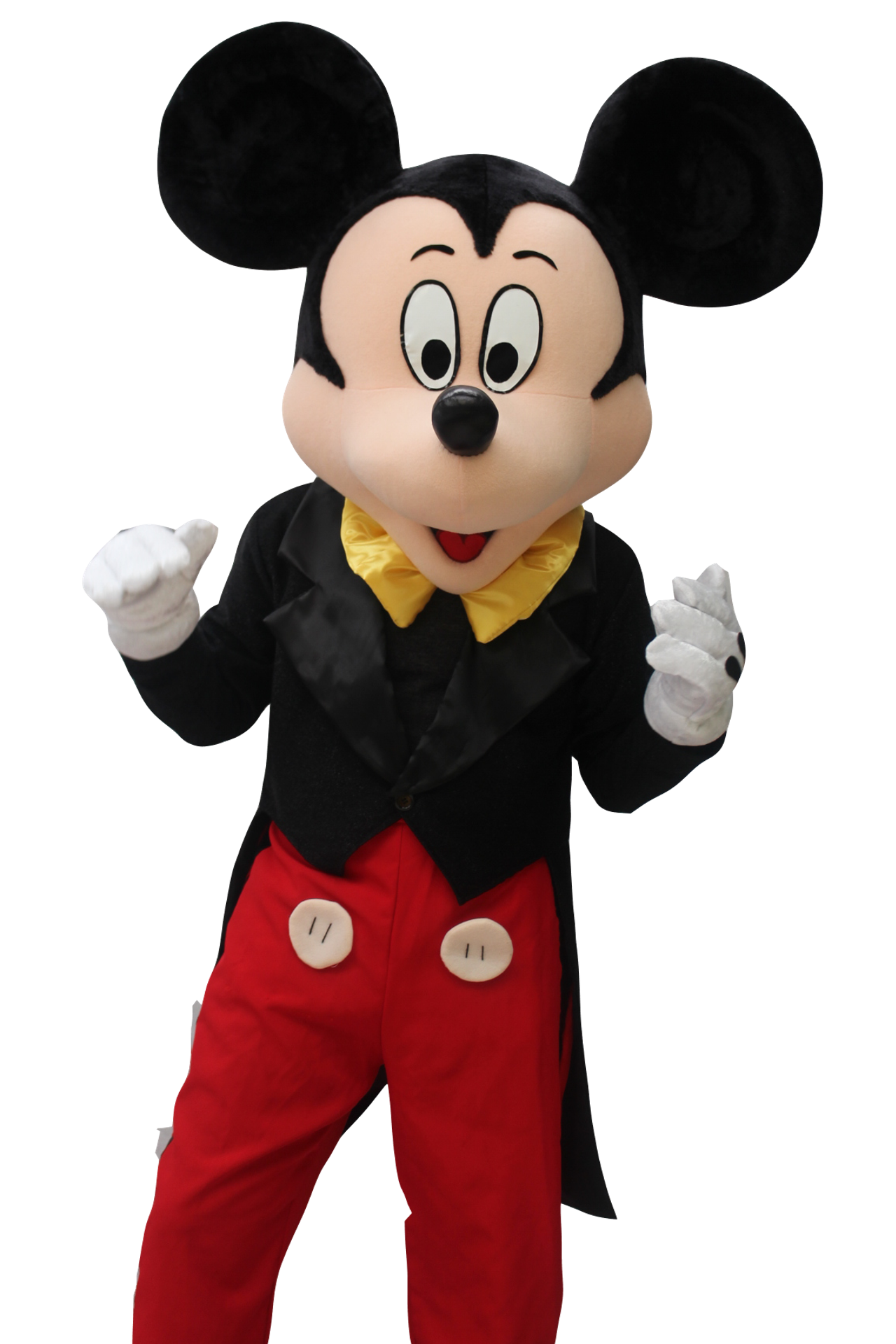 Mascote Partyval Mickey b