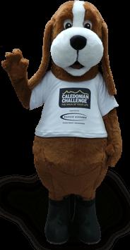 challenge mascot costume dog