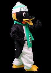 Mascote Partyval Pinguim Halls 3.png