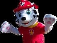 Mascote Partyval patrulha pata marshall 2