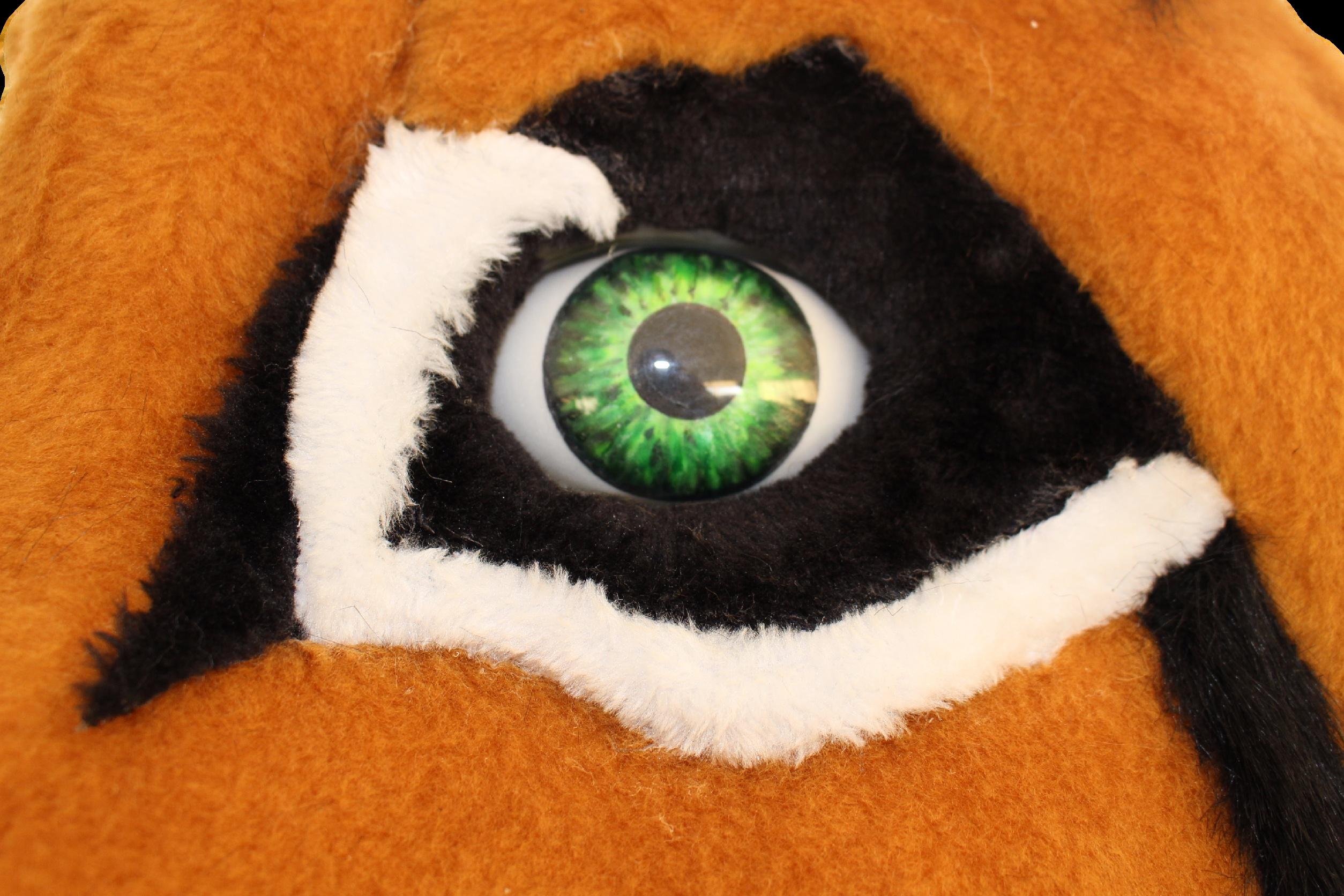 Mascote Partyval Lince - detalhe pintura olho