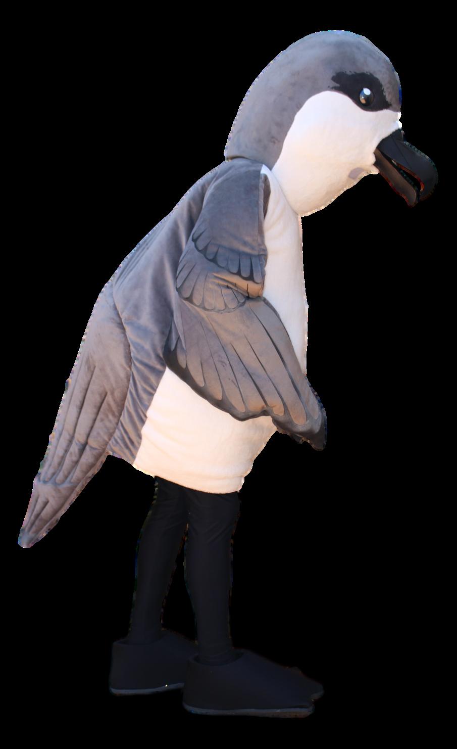 Mascote Partyval Gaivota Freira da Madeira