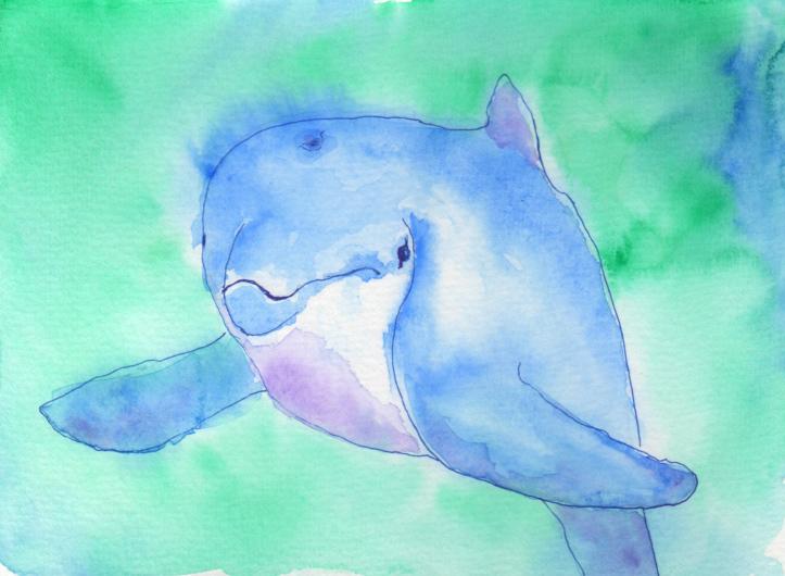 Dolphin by Elizabeth Oertel