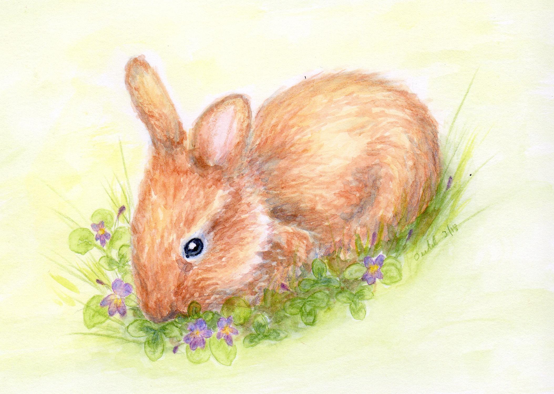 Baby Bunny Watercolor