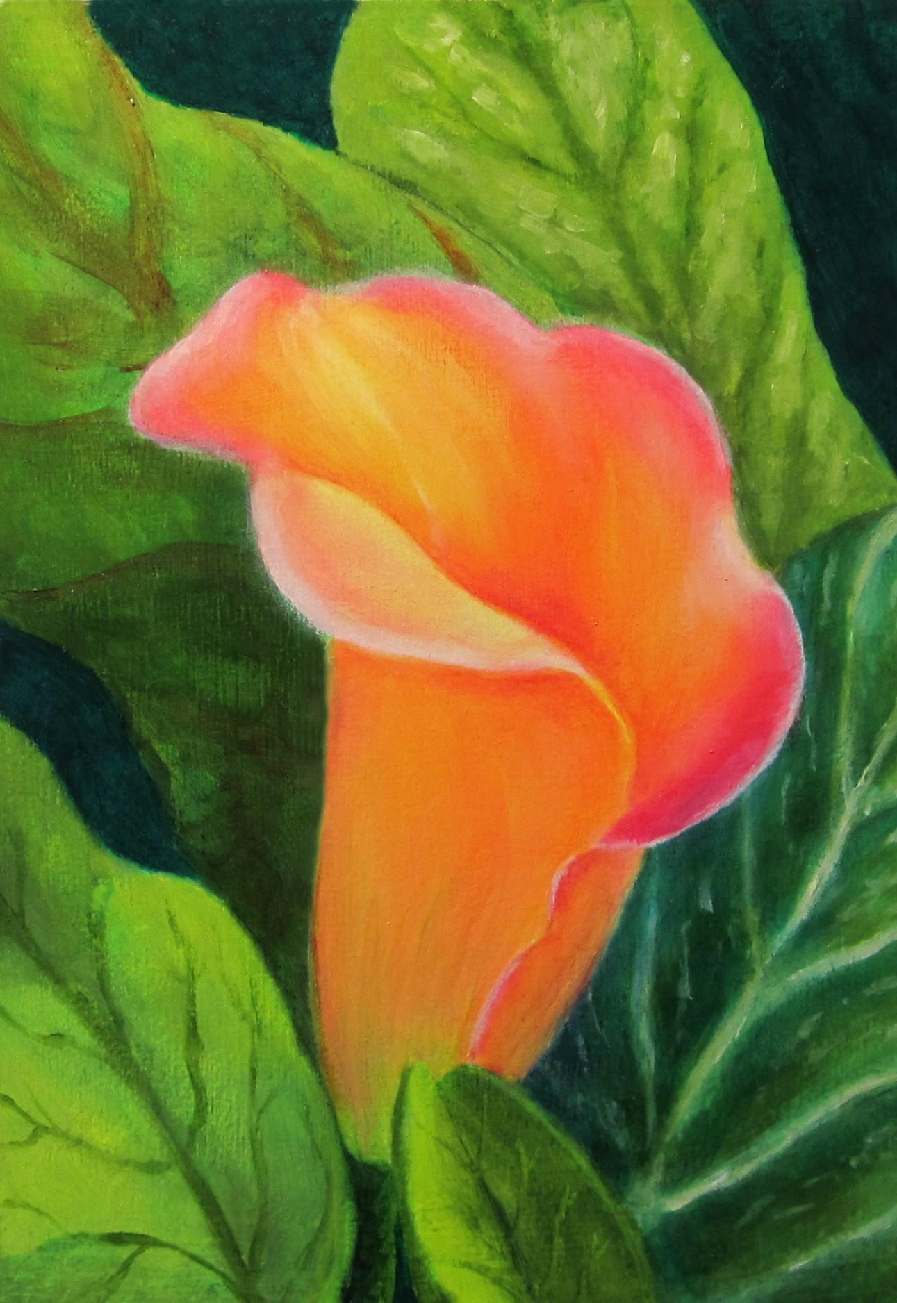 Jill's Cala Lily by Elizabeth Oertel
