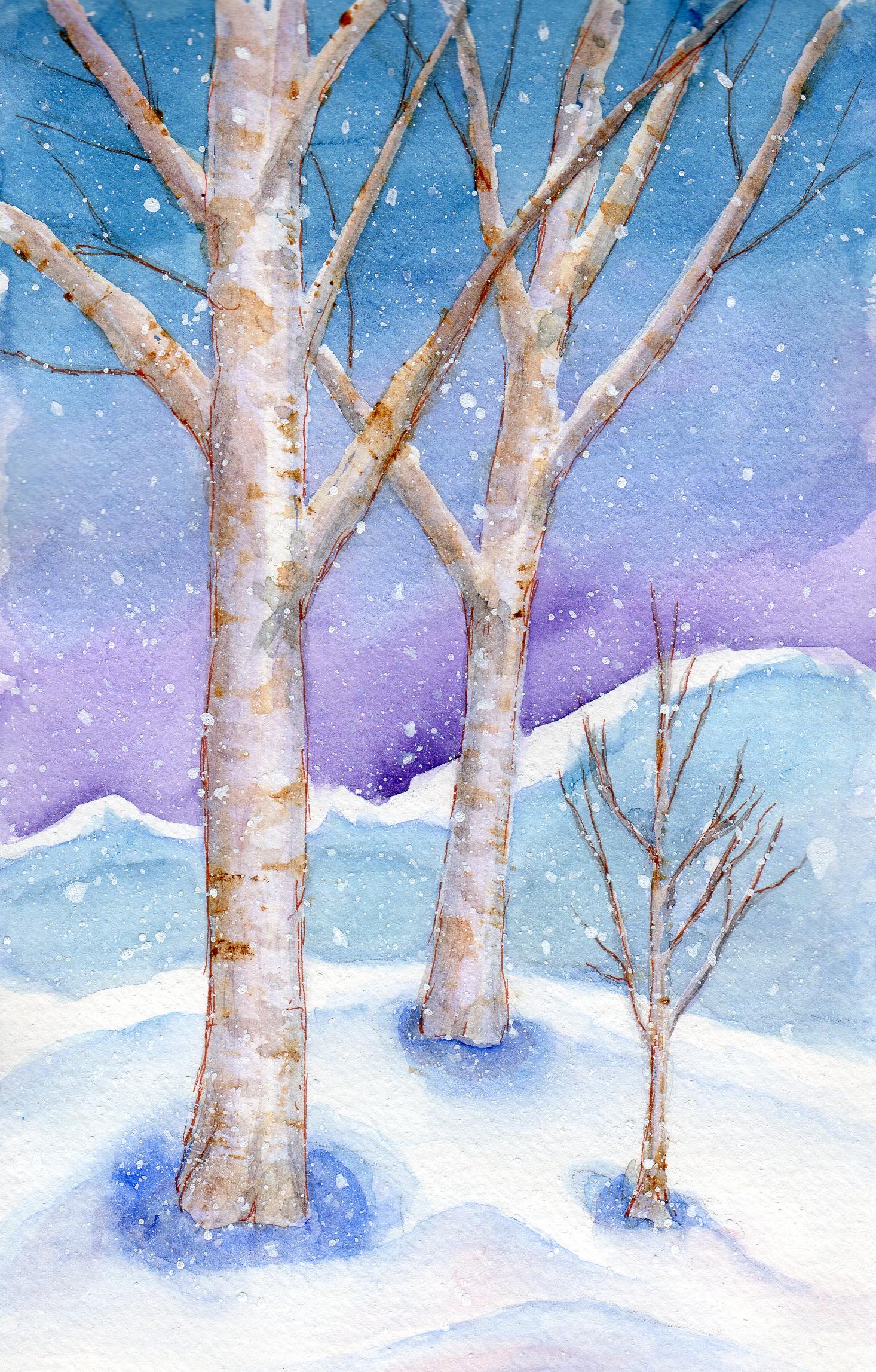 Snowy Birches by Elizabeth Oertel