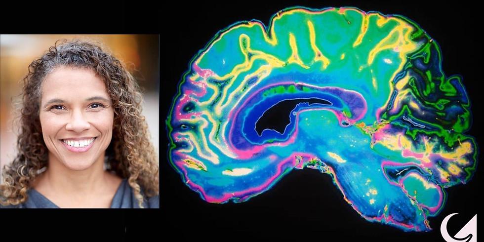 Multiverse: Your Brain on Sleep