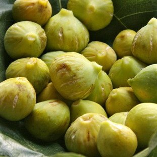Amazing fresh figs