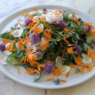 Cooking class: field salad